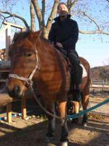 [お馬さんと一緒]